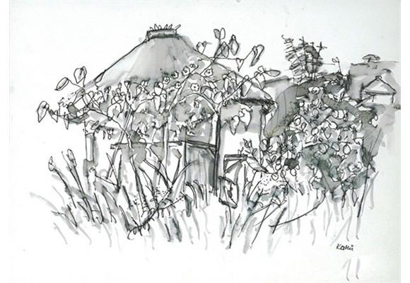suedafrika8